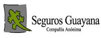 C.A. Seguros guayana